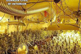 Detenido en ses Salines por una plantación 'indoor' de marihuana