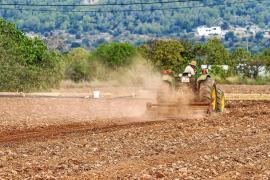 Los payeses no podrán ofrecer agroestancias hasta que haya plazas turísticas disponibles