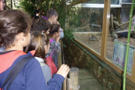 Alumnes del CEIP Es Canyar de Manacor varen visitar Natura Parc