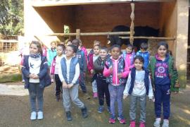 Alumnes d' Infantil del Ceip Eleonor Bosch de Santa Margalida visitaren Natura Parc
