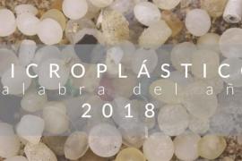 'Microplástico', palabra del año para la Fundéu BBVA