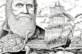 El ibicenco Joan Escandell dibuja la vida de Charles Darwin