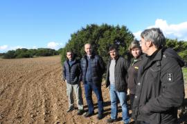 Can Marroig acogerá una prueba piloto de plantación de hierbas aromáticas