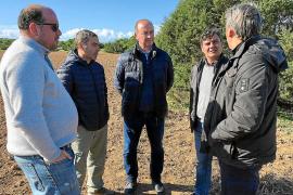Formentera refuerza su tradición con nuevos cultivos en Can Marroig