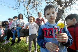 Día de diversión y aprendizaje entre los almendros en flor de Corona