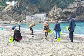 La gran cantidad de bastoncillos de plástico de Cala Vedella sorprende a los voluntarios