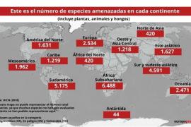 Más de 26.500 especies amenazadas en el mundo, 686 en España, según la UICN