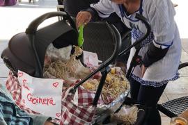 La rúa de carnaval de Formentera, en imágenes (Fotos: Arnau Camarena).