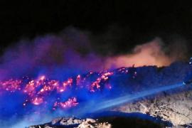 Investigan el origen de un incendio declarado en un centro de gestión de biomasa