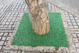 Vila inicia la mejora de alcorques y jardineras en Figueretes