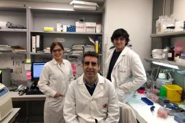 Dos investigadores de Mallorca abren la puerta al desarrollo de nuevas terapias contra el cáncer