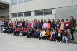 Alumnes del Ceip Port de Pollença varen visitar Grup Serra y Agromallorca