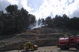 Controlado el incendio forestal de Ibiza