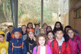 Alumnes del CEIP Maria de la Salut varen visitar Natura Parc