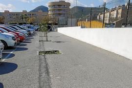 EPIC propone reponer árboles y mejorar el mantenimiento de jardines en Vila