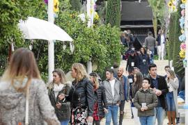Las carpas salvan de la lluvia una Fiesta de la Primavera en Atzaró pasada por agua