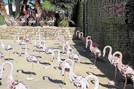 El club de Cathy Guetta en Ibiza se declara en concurso de acreedores