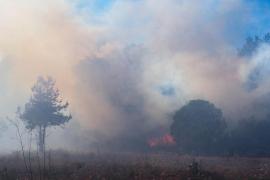 El incendio en Santa Gertrudis, en imágenes (Fotos: Marcelo Sastre).