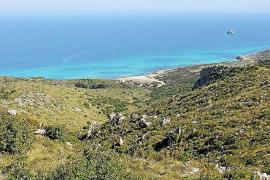 El Parque Natural de Llevant pasará a tener 16.855 hectáreas