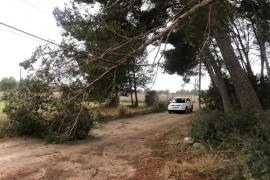 El temporal provoca varios incidentes en la isla de Ibiza