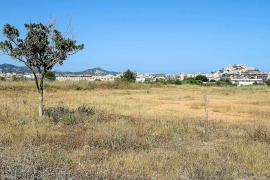 La falta de agua en Vila paraliza la construcción de las 532 VPOs previstas en Ca n'Escandell