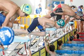 La natación ibicenca pone la guinda