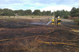 Extinguido un incendio que ha quemado 3.300 m² de terreno agrícola en Sant Antoni