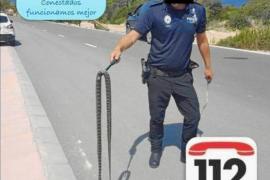 La Policía de Sant Josep retira una serpiente de herradura en Cala Vedella