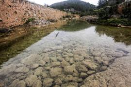 Las reservas hídricas de Ibiza caen cinco puntos respecto a abril y se sitúan en el 48%