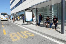 El Consell confirma que recuperará las paradas urbanas de bus ante las críticas de los usuarios