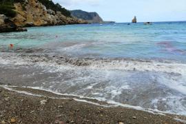 Una plaga de medusas invade la playa de Benirrás