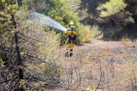 El incendio en una zona de viviendas en sa Carroca, en imágenes (Fotos: Toni Planells).