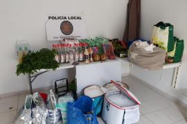 Sant Antoni interpone siete denuncias por venta ambulante en Cala Saladeta