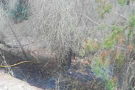 Sofocan un pequeño incendio en la carretera de Sant Josep