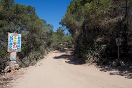 El Consell d'Eivissa inspeccionará la obra que se está haciendo en ANEI en Cala Salada