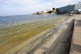 El agua de Talamanca se llena de manchas de microalga por las altas temperaturas