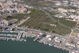 Vila pide que se revise la delimitación  de ses Feixes d'es Prat de Vila como humedal