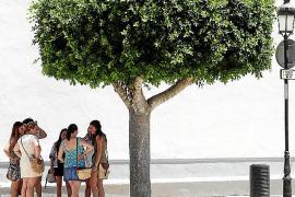 La isla de Ibiza entra en el mes de junio en situación de prealerta por la sequía