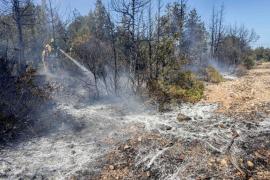 El incendio forestal en Sant Carles, en imágenes (Fotos: Daniel Espinosa).