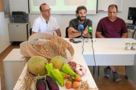 Lanzan una campaña para dar mayor visibilidad al producto local de Ibiza