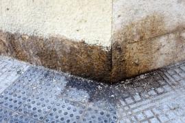 La falta de limpieza en las calles del Eixample, en imágenes. (Fotos:Daniel Espinosa)