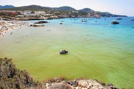 Las aguas de Cala Tarida se tiñen de un verde sucio por la aparición de microalgas