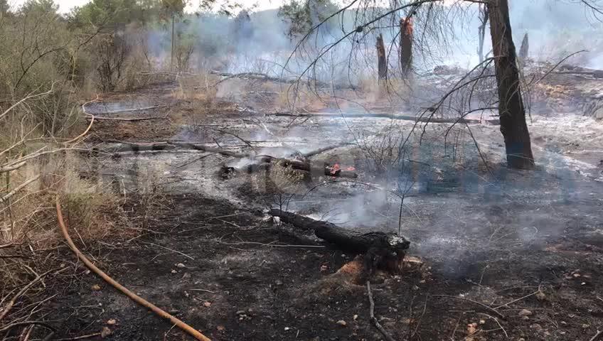 Sant Joan revive la pesadilla de un incendio forestal, el tercero en tan solo once días