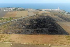Formentera señala a Endesa como posible responsable del incendio de la Mola