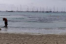 Sant Josep habilita un canal de entrada para embarcaciones en la playa de ses Salines