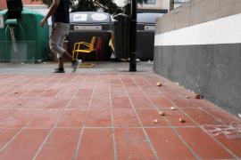 La suciedad en las calles de la ciudad de Ibiza, en imágenes (Fotos: T. Planells).