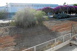 Ejecutan trabajos de limpieza en cuatro solares municipales de Vila