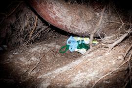 Los zulos de la venta ambulante en el Parque Natural de ses Salines, en imágenes .