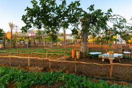 Nuevo huerto ecológico de Agroturismo Atzaró
