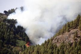 El calor y el viento complican el incendio de Gran Canaria